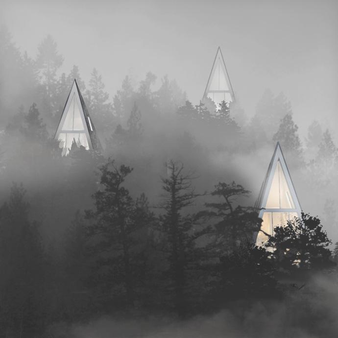 Современные экологически чистые дома, расположенные среди деревьев или эко однополярный дом